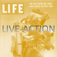 live-action-1