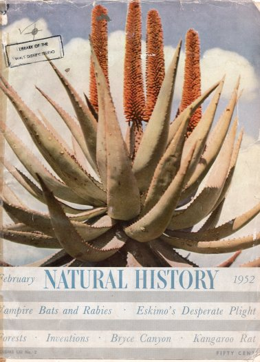 Front Cover (Reminiscent of The Living Desert)