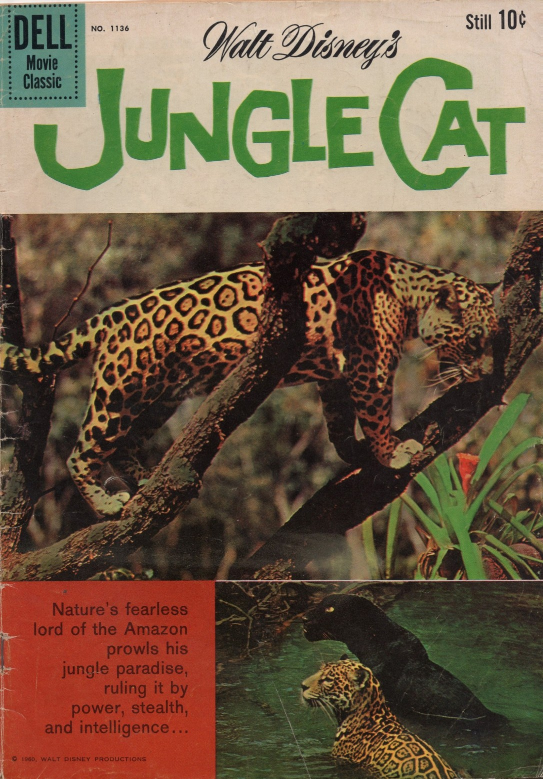 Jungle Cat Comic Book